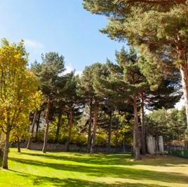 Campamento de Verano en Ingles cerca de Madrid