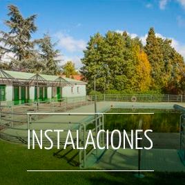 Instalaciones y entorno del Campamento de Verano cerca de Ciudad Real a dos horas y media de Madrid